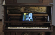 Piano with Scenes from Life